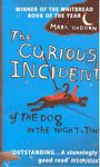 CURIOUS INCIDENT OF THE DOG IN THE NIGHT TIME THE