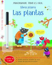 PLANTAS  LAS A PARTIR DE 5 AÑOS
