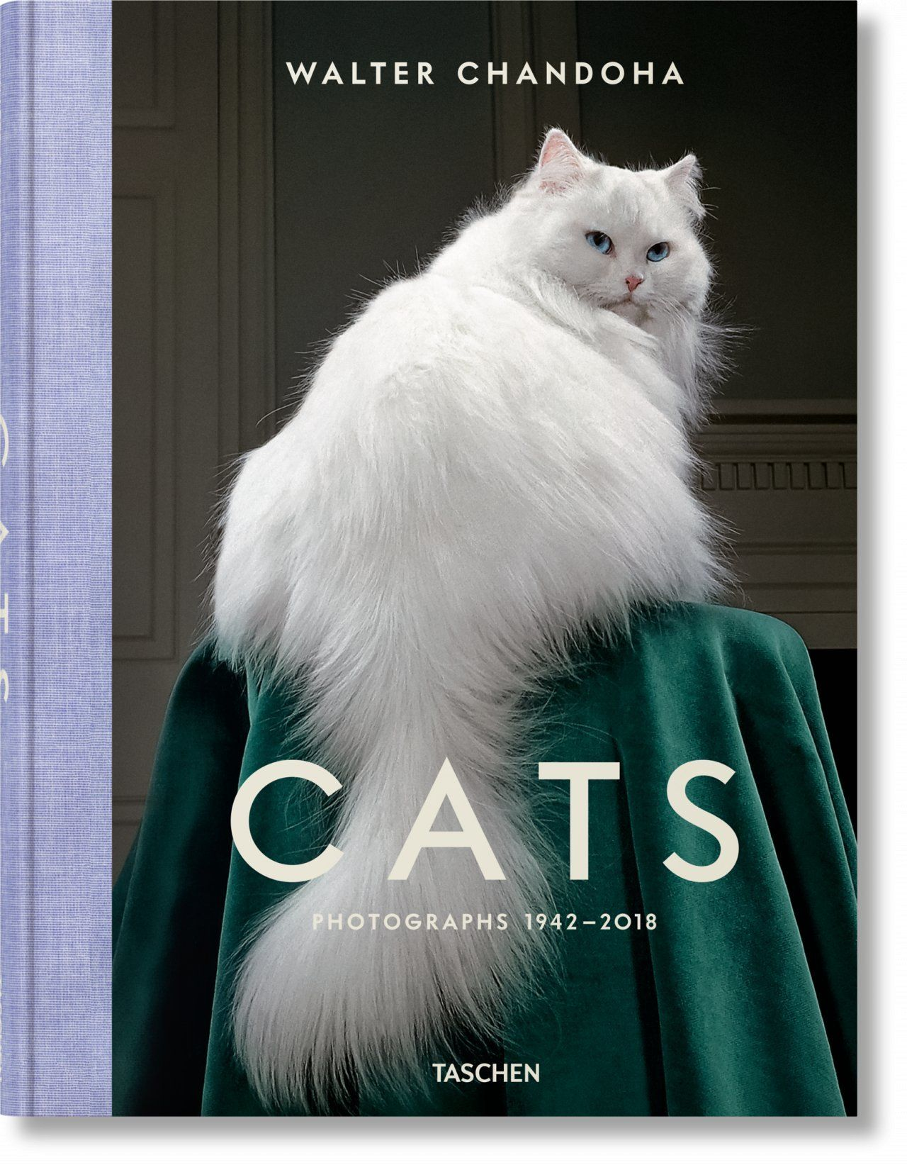 CATS PHOTOGRAPHS 19422018