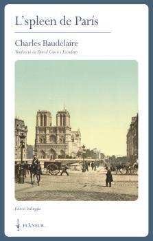 SPLEEN DE PARIS
