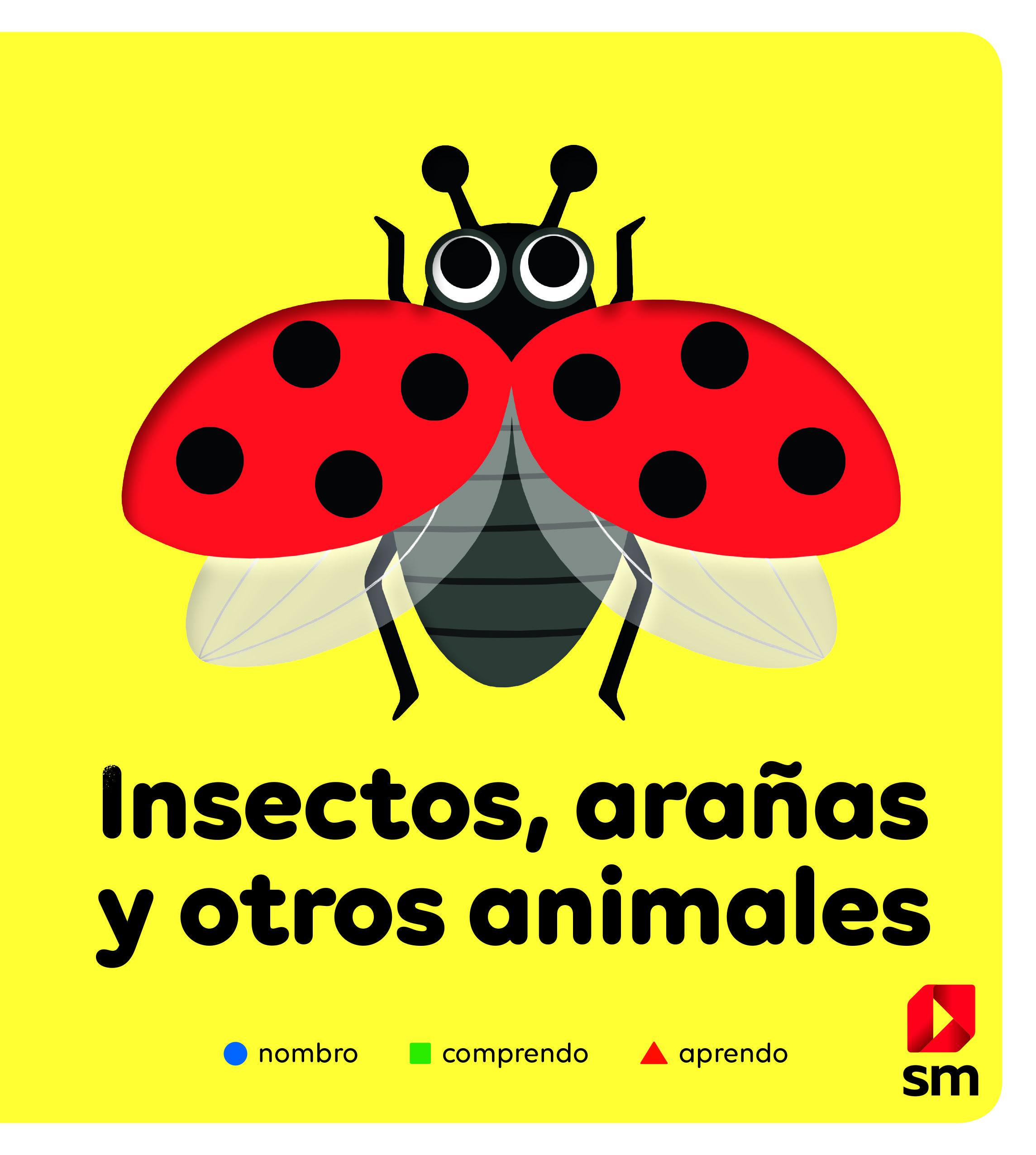 INSECTOS ARAÑAS Y OTROS ANIMALES
