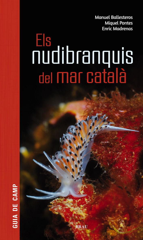 NUDIBRANQUIS DEL MAR CATALÀ ESL