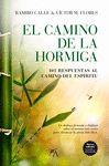 CAMINO DE LA HORMIGA EL
