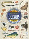 COL LECCIO DE CURIOSITATS OCEANS
