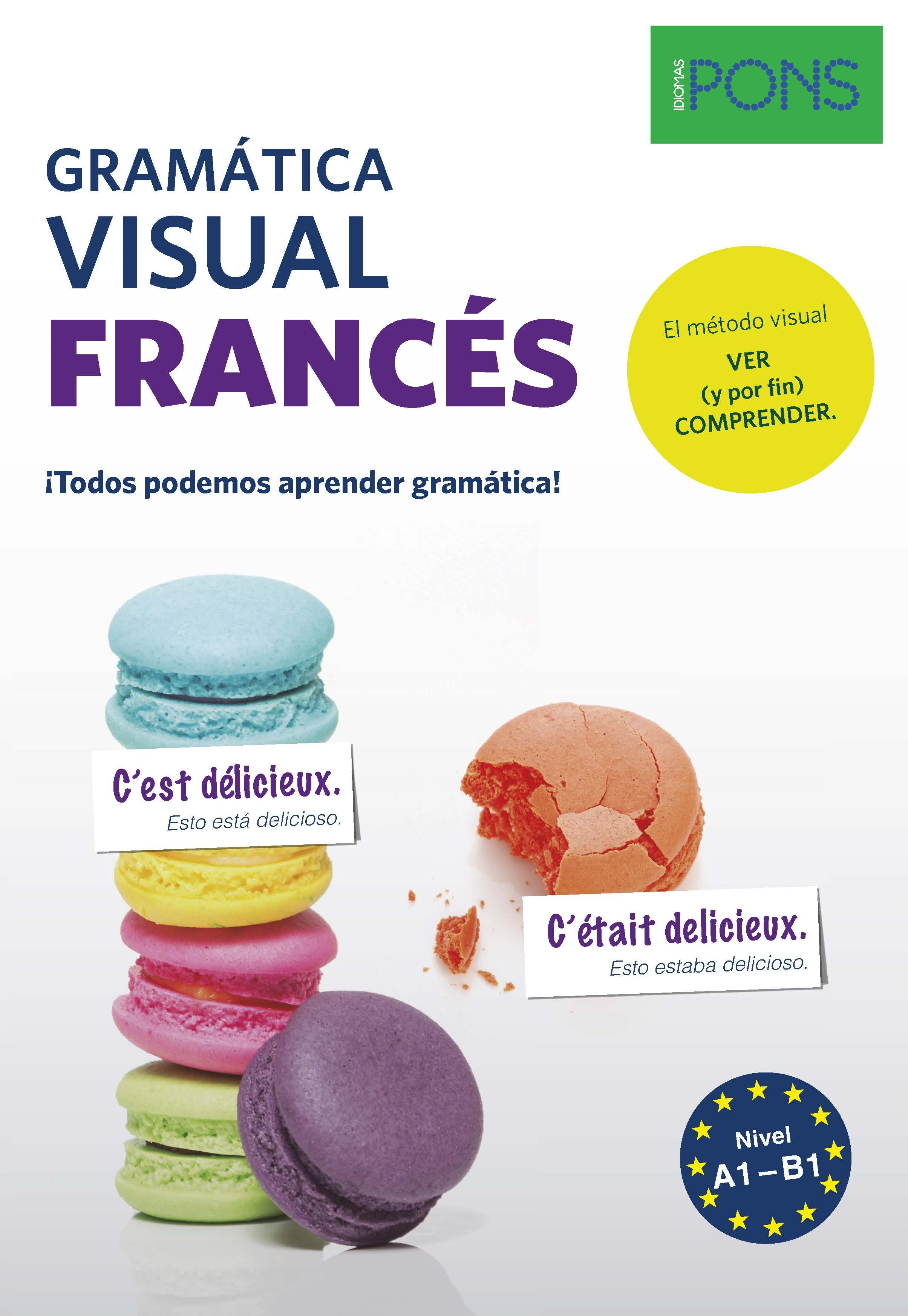 GRAMATICA VISUAL FRANCES PONS