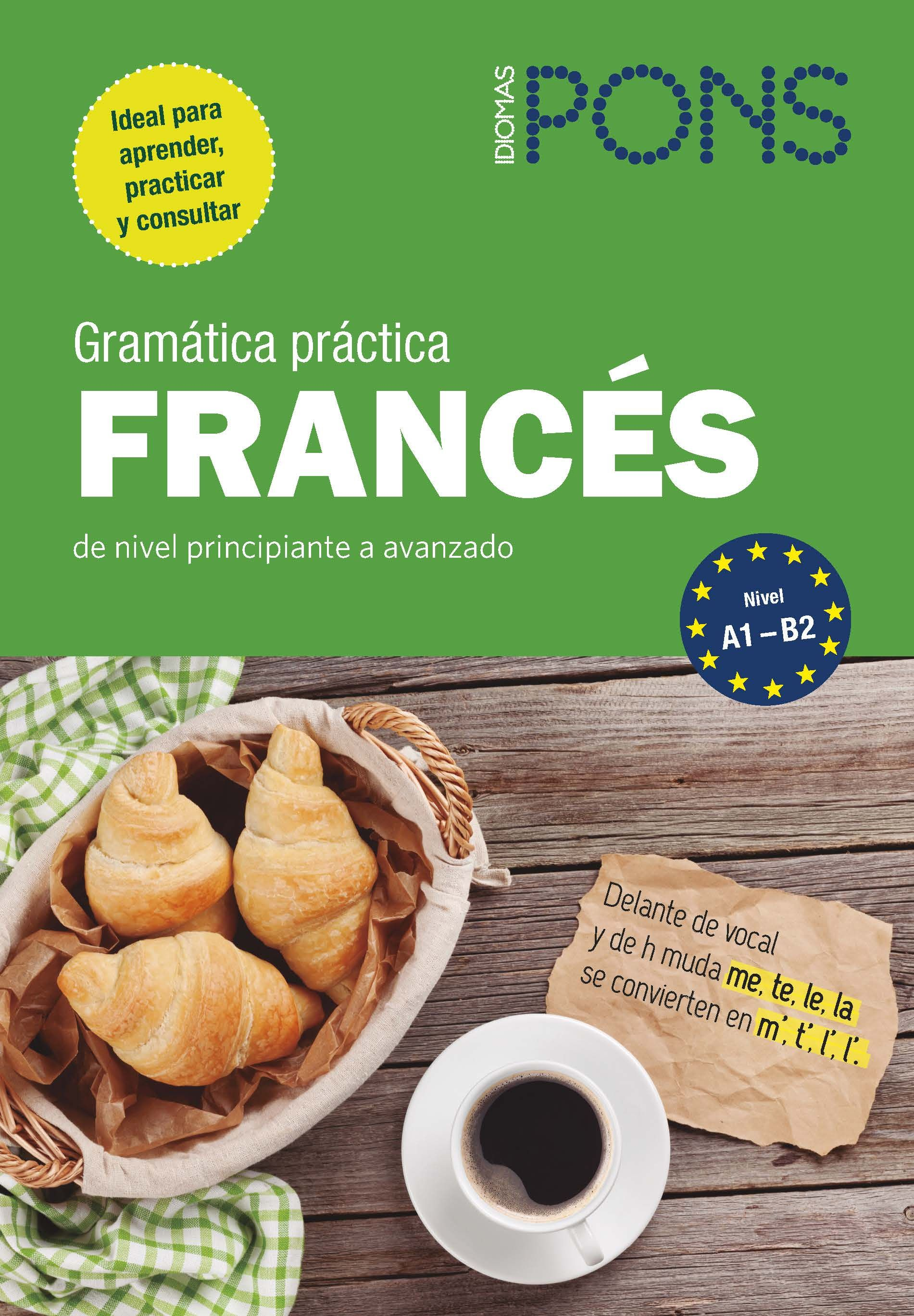 GRAMATICA PRACTICA FRANCES PONS