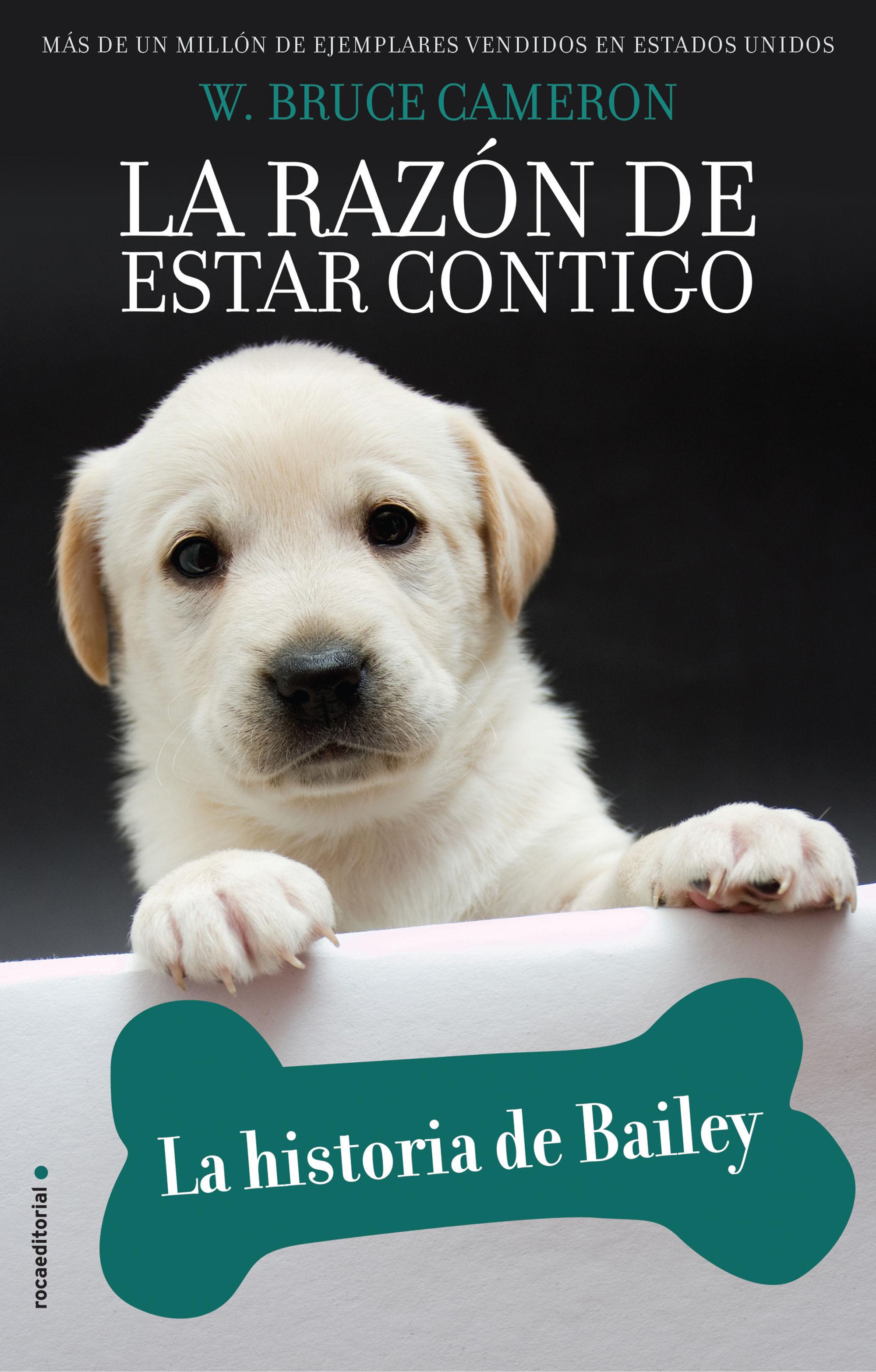 RAZON DE ESTAR CONTIGO LA HISTORIA DE BAILEY