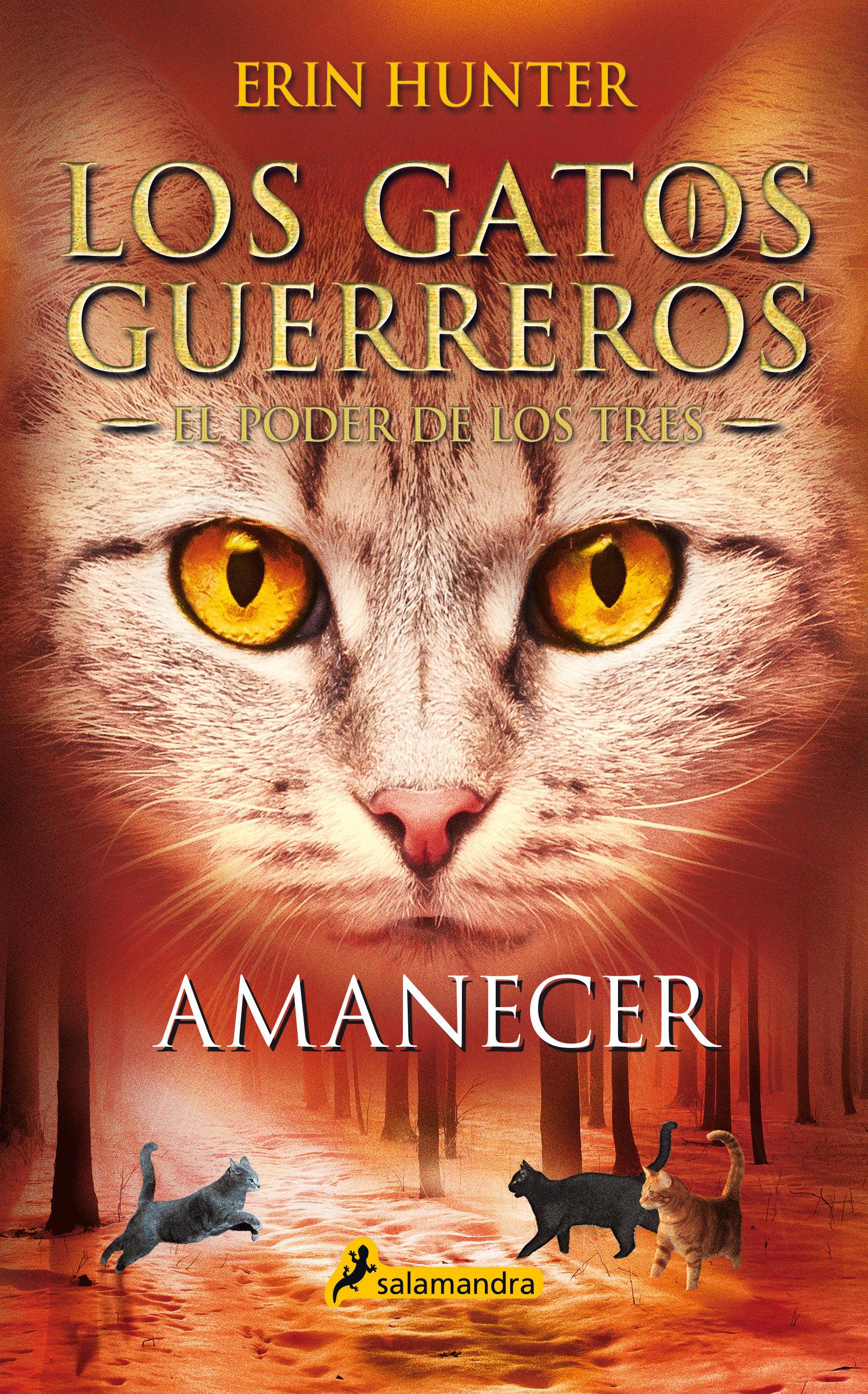 AMANECER LOS GATOS GUERREROS EL PODER DE LOS TRES 6