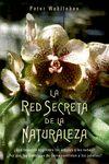 RED SECRETA DE LA NATURALEZA LA