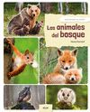 DESCUBRO LOS ANIMALES DEL BOSQUE