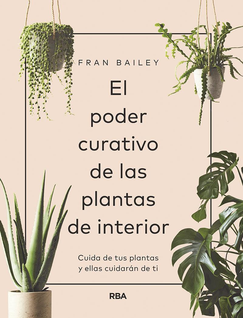 PODER CURATIVO DE LAS PLANTAS DE INTERIOR EL
