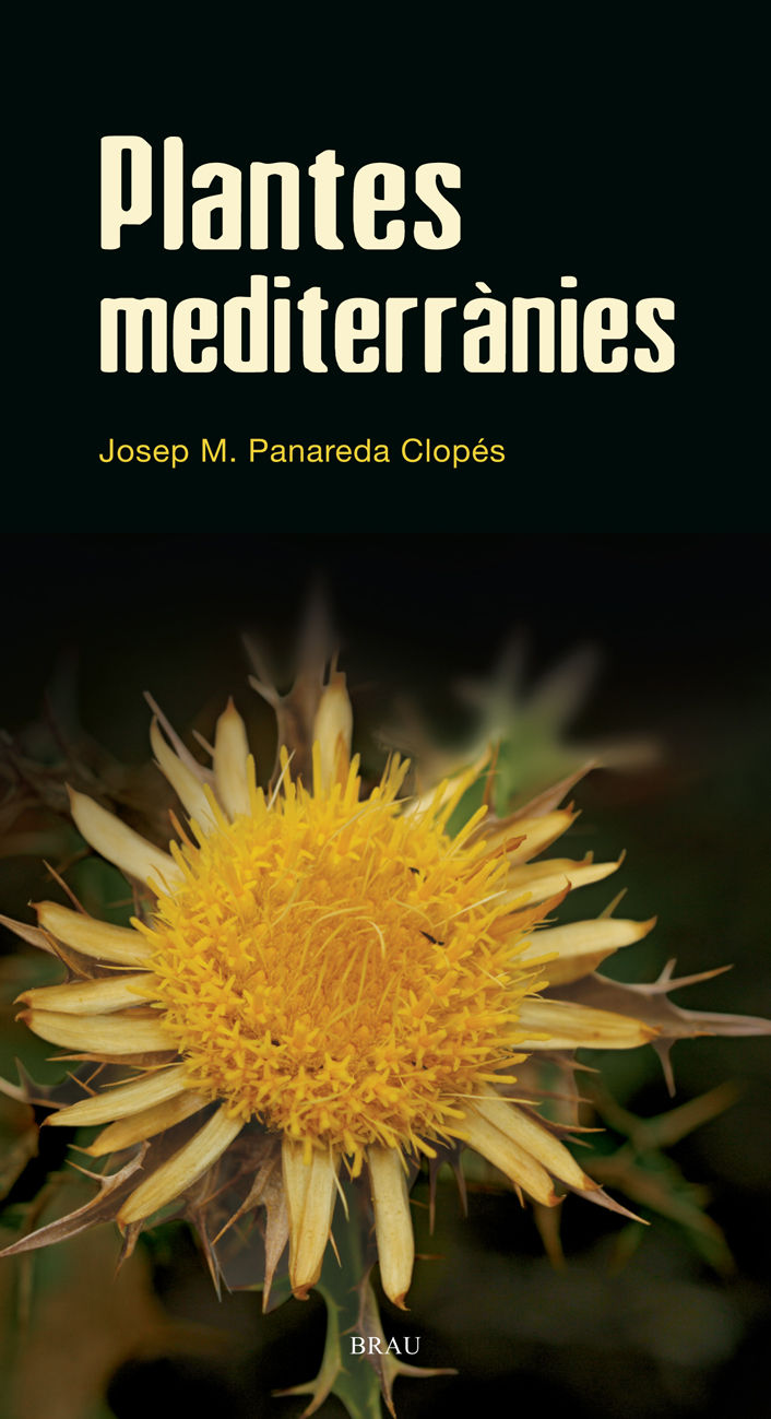 PLANTES MEDITERRANIES