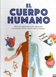 CUERPO HUMANO EL