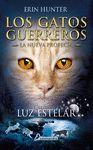 GATOS GUERREROS LUZ ESTELAR 4
